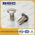 CARRIGE BOLTS
